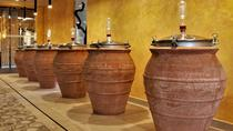 Discover the ancient roman wines, Pompeii, Cultural Tours
