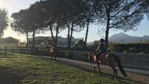 Horse Riding Experience and Wine Tasting Tour, Pompeii, Wine Tasting & Winery Tours