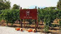Private tour of Pompeii Ruins, Tasting Tour and Transfer for the Winery, Pompeii, Private...