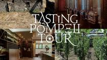 Private tour of Pompeii Ruins, Tasting Tour and Transfer for the Winery, Pompeii, Private ...