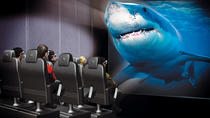Antalya Aquarium and XD Cinema Combo Ticket with Transfer Upgrade, Antalya, Attraction Tickets