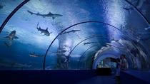 Antalya Aquarium Ticket with Optional Transfer, Antalya, Attraction Tickets