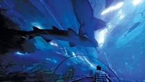 Aquaria KLCC Admission Ticket (E-Ticket), Kuala Lumpur, Attraction Tickets