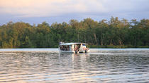 Half-day Kuching Wetlands National Park Mangrove Cruise, Kuching, Half-day Tours