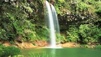 Half-Day Lambir Hills National Park Tour from Miri, Sarawak, Attraction Tickets