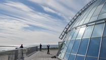 Reykjavík Perlan Museum: Observation Deck Entrance Ticket