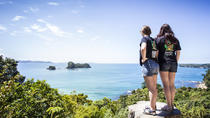 3-Day Winterless North Tour from Auckland, Auckland, Multi-day Tours