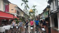 Historical Singapore Bike Tour, Singapore
