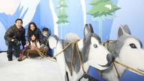 1-hour Snow Play Session at Snow City Singapore, Singapore, Theme Park Tickets & Tours