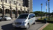 Mezza giornata Tour privato di Dunedin City Highlights e Peninsula Scenario, Dunedin & The Otago Peninsula, Private Sightseeing Tours