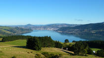 Otago Peninsula Scenic and City Highlights Tour, Dunedin & The Otago Peninsula, Day Trips