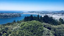 Shore Excursion: Otago Peninsula Scenery and City Highlights Tour, Dunedin & The Otago ...
