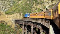 Shore Excursion: Taieri Gorge Train and Otago Peninsula Scenery & Castle Garden, Dunedin & The ...