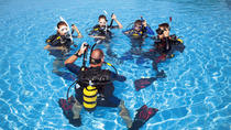 Sydney Open Water Diver Course, Sydney, Scuba Diving