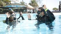 Try Scuba Diving Experience: Sydney, Sydney, Scuba Diving