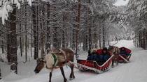 Long Reindeer Safari, Lapland, Cultural Tours