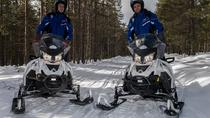 Snowmobile Safari to Reindeer and Husky Farms from Rovaniemi, Rovaniemi