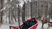 Snowmobile Safari to Reindeer Farm with One Hour Reindeer Safari, Rovaniemi, 4WD, ATV & Off-Road...
