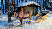 Visit a Reindeer Farm and One Hour Safari, Rovaniemi, Cultural Tours