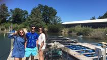 Southold Bay Private Oyster Farm Tour, Long Island, Private Sightseeing Tours