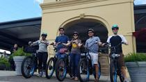 Creole New Orleans Electric Bike Tour , New Orleans, Bike & Mountain Bike Tours