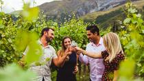 Wine Sampler Tour, Queenstown, Food Tours