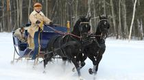 Horse drawn sled in Kuskovo, Moscow, Private Sightseeing Tours