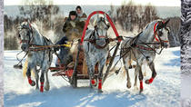 Troika Ride Experience in the region of Moscow, Moscow, Private Sightseeing Tours
