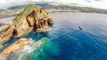 Private Marine Wildlife Boat Tour, Ponta Delgada, Private Sightseeing Tours