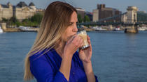 Budapest Sightseeing Cruise with Complimentary Coffee and Transfer, Budapest, Day Cruises