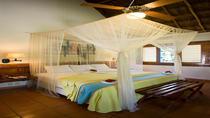 8-Day Yucatan Peninsula: Small-Group Tour from Cancun Including Chichen Itza, Uxmal, Ek Balam and Tulum