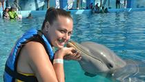 ATV Adventure and Dolphin Encounter Combo Tour, Puerto Vallarta, 4WD, ATV & Off-Road Tours