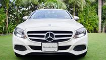 Concierge Service Airport Meet Greet and Escort From Mex City to Puebla Airport, Mexico City, ...