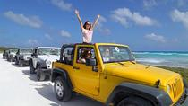 Cozumel Jeep Adventure from Cancun: A Complete Cultural and Ecological Experience, Cancun, 4WD, ATV ...