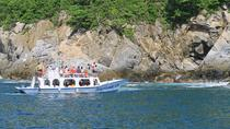 Private Day Trip: 7 Bays of Huatulco from Puerto Escondido, Puerto Escondido