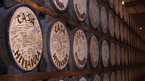 Tequila Magic Excursion: Casa Herradura Distillery and Guachimontones Ancestral Ruins, Guadalajara,...