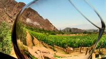 Valle de Guadalupe Wine Tasting, Ensenada, Wine Tasting & Winery Tours