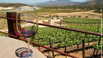 Valle de Santo Tomás Wine Tasting, Ensenada, Wine Tasting & Winery Tours