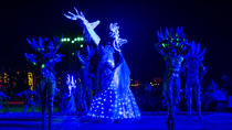 Wirikuta show & dinner experience, San Luis Potosí, Cultural Tours