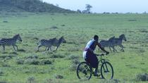 1 day Ngorongoro Mountain Bike Safari, Arusha, City Tours