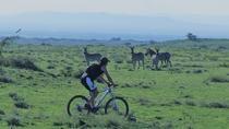 13 days Cycling Safari in Tanzania & Zanzibar, Arusha, 4WD, ATV & Off-Road Tours