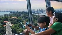 Tiger Sky Tower Admission Ticket