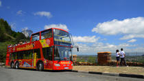 Hop-On Hop-Off-1- oder -2-Tagestour in Johannesburg Innenstadt, Johannesburg, Hop-on Hop-off Tours