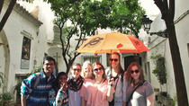 Guided Tour of Santa Cruz Jewish Quarter, Alcázar, and Cathedral, Seville, Walking Tours