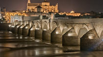 Private Old Cordoba Rundgang und Moschee-Kathedrale, Cordoba, Walking Tours