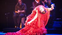 Seville Pure Flamenco Tour, Seville, Flamenco