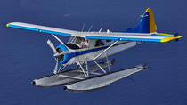 Seaplane Tour of Miami, Miami, Air Tours