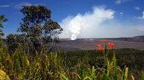 Hawaii Volcano Eco-Adventure Day Trip from Oahu, Oahu, Ziplines