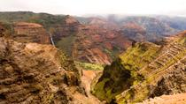 Small-Group Kauai Tour Including Waimea Canyon, Poipu and Koloa, Kauai, Full-day Tours