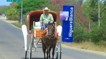 Carriage ride through the town, Nayarit, Horse Carriage Rides
